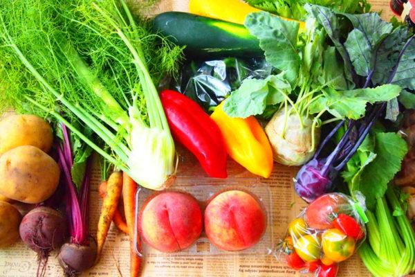 食品・農産物